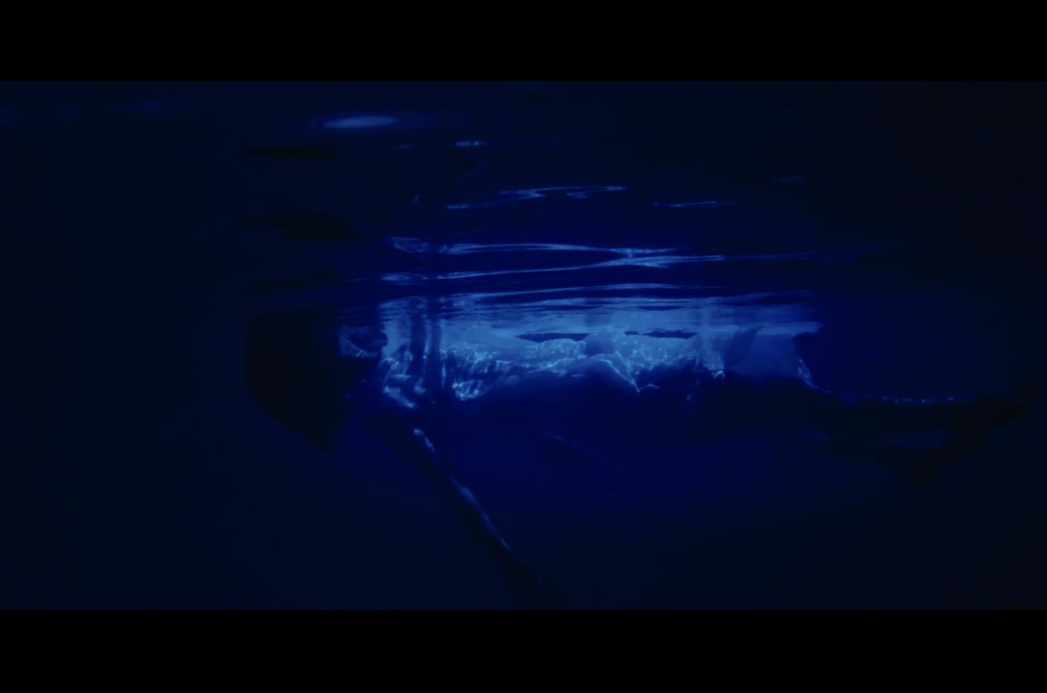初めて挑んだ「水中撮影」 機材やロケ地はどうしたのか【bacter】