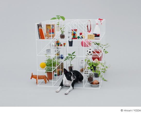 映像制作にも使える発想 犬小屋を通して「デザイン」を考える